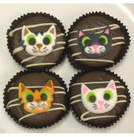 Chocolate Covered Oreo Cookie - Kitty Cats