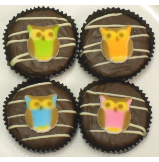 Chocolate Covered Oreo Cookie - Owls