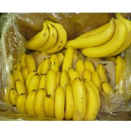 Frozen Chocolate Covered Bananas